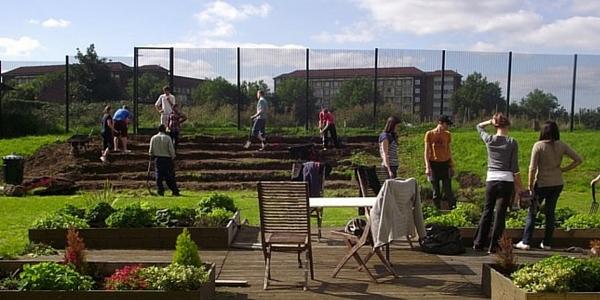 Volunteers planting a community growing scheme