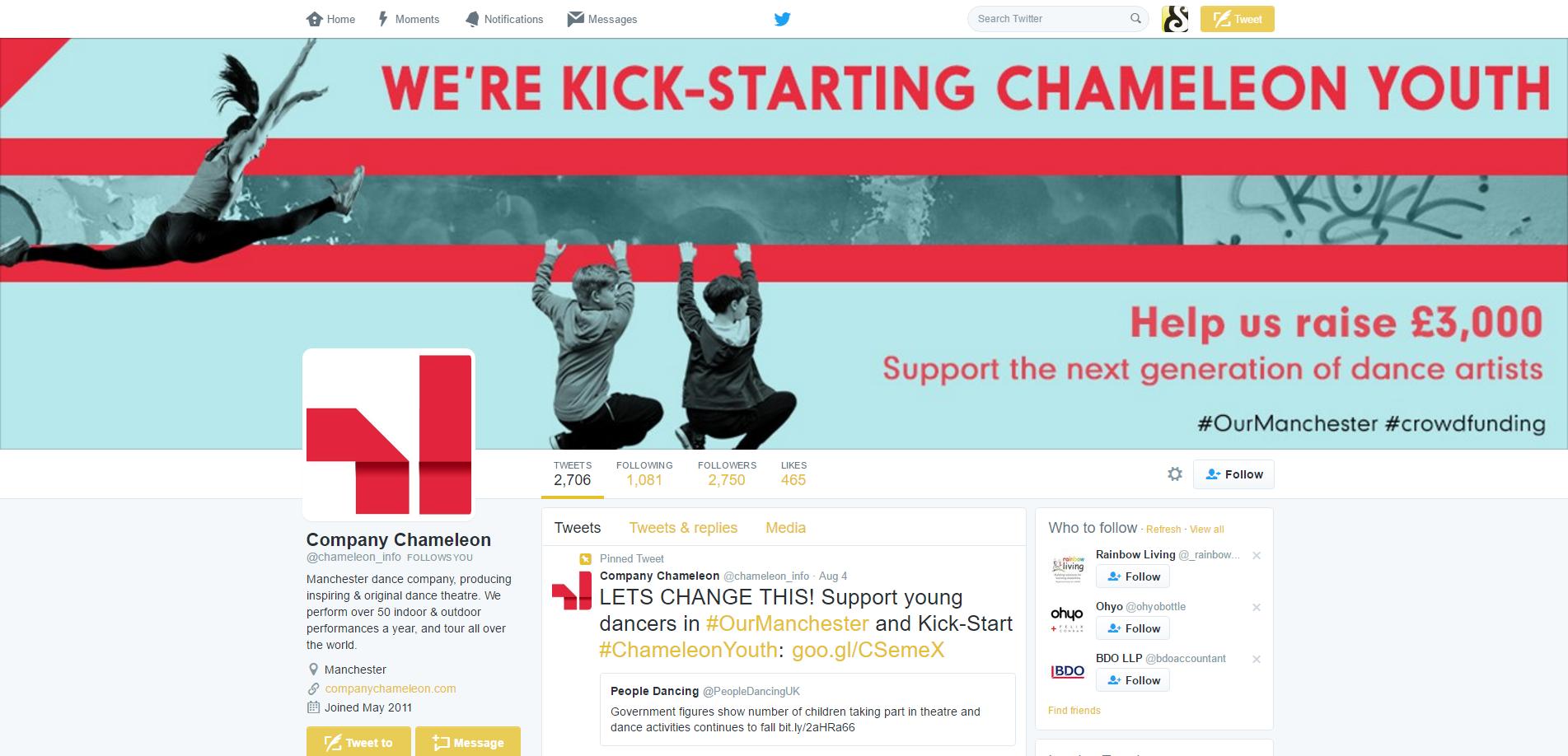 Chameleon Twitter Banner