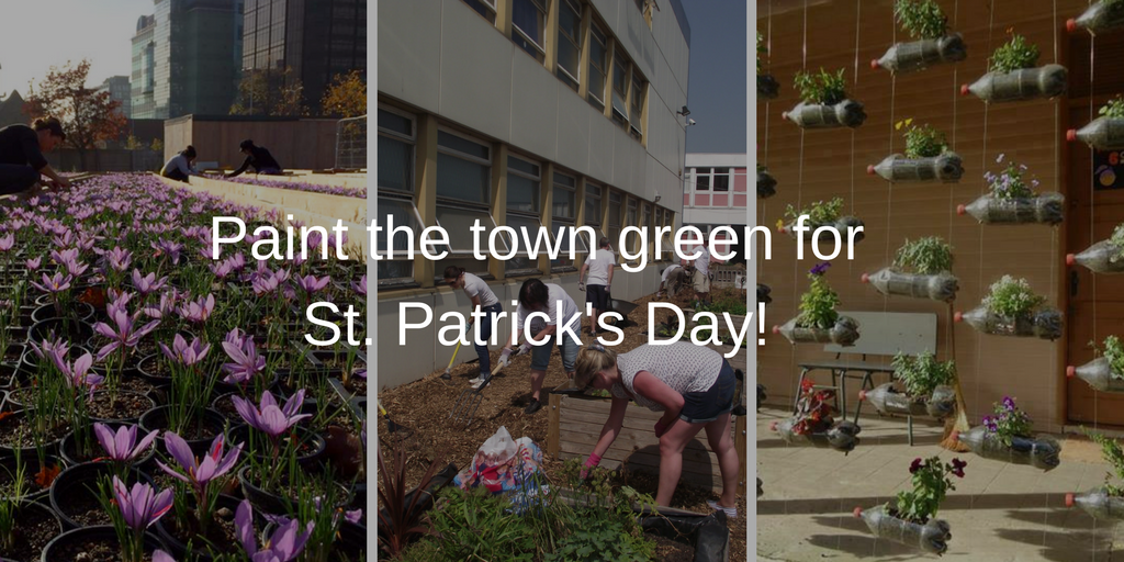 Paint the town green this St. Patricks Day